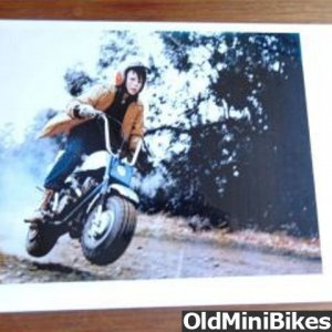 Bonanza-mini-bike-photo